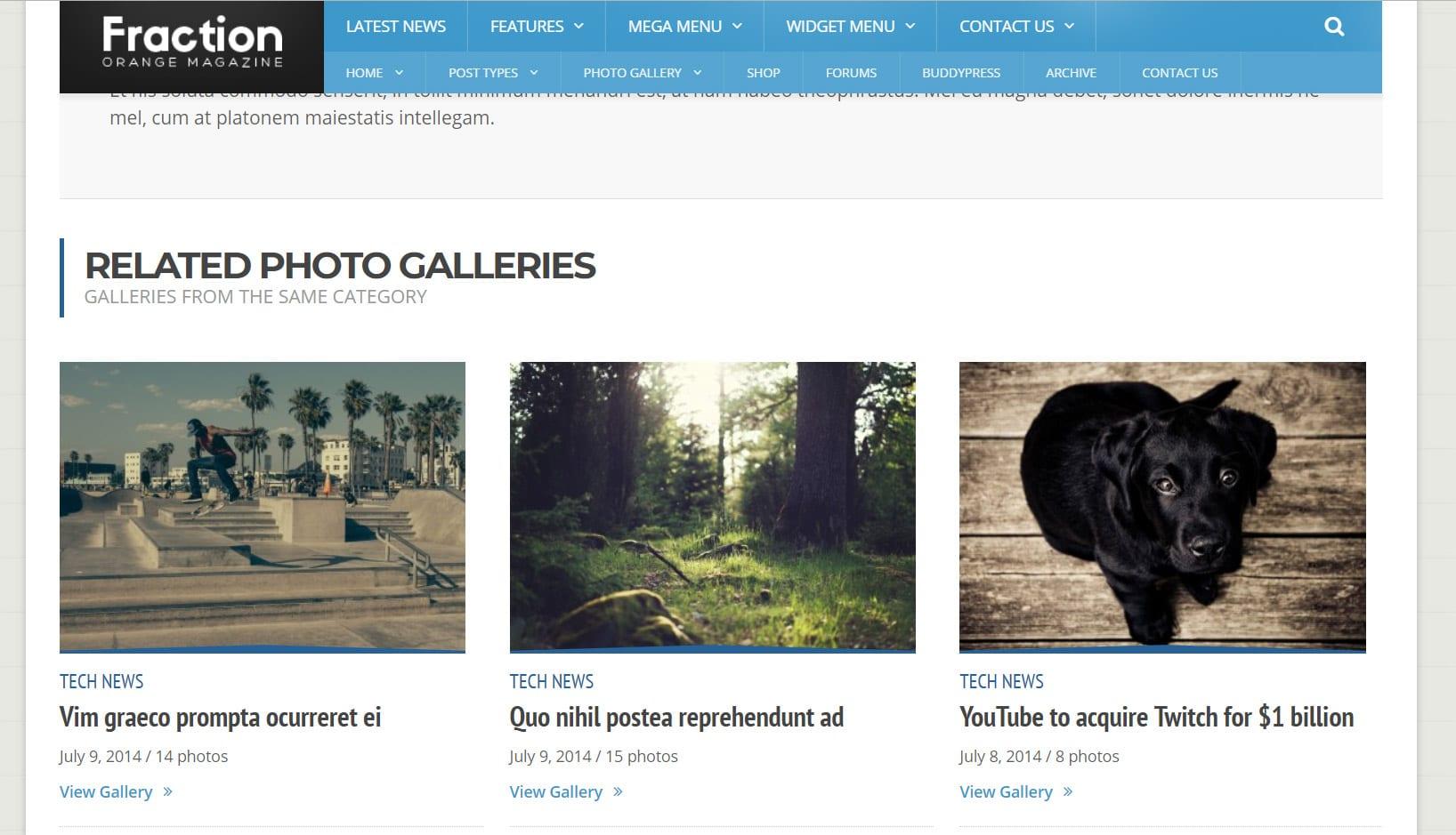 Galleries WP Magazine Orange Themes